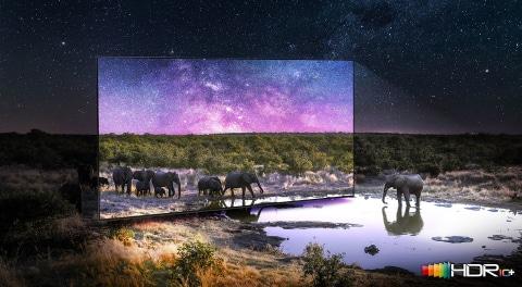 Quantum HDR 24x: contraste dinámico para colores vivos que saltan de la pantalla
