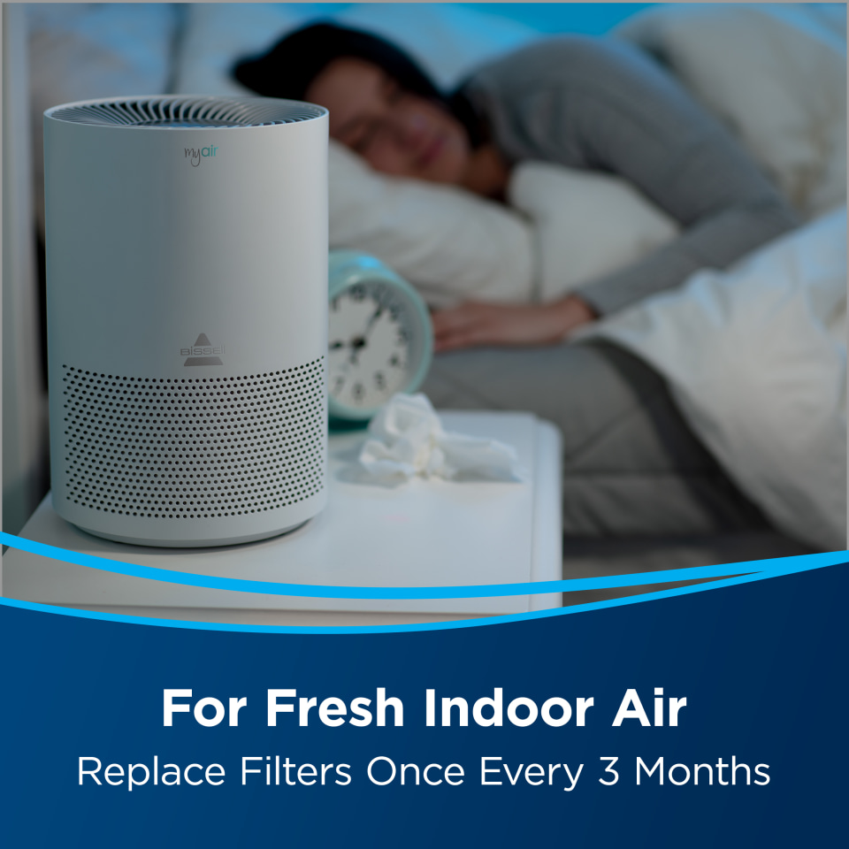 Bissell Myair Personal Air Purifier Replacement Filter In The Air Purifier Filters Department At Lowes Com