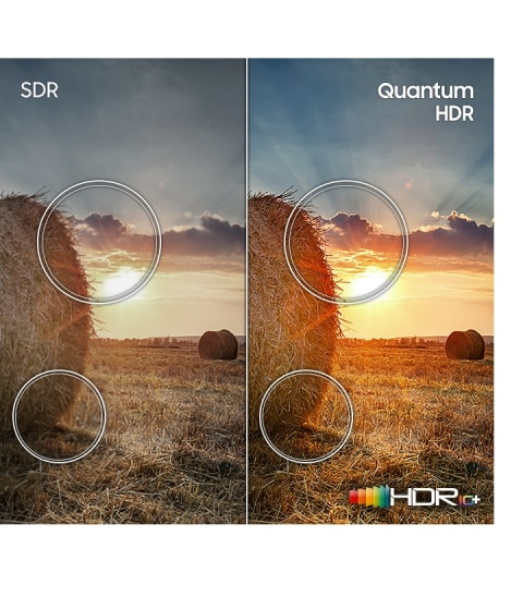 Go beyond HD with more dynamic color - Quantum HDR
