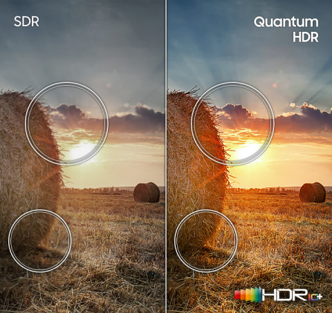 Experience a full range of details - Quantum HDR