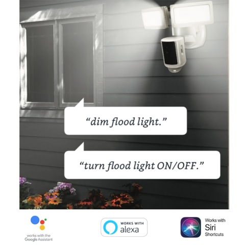 Control Lights with Voice Commands
