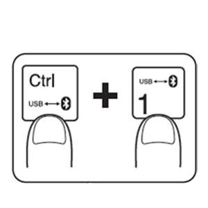Multi-Device Switching