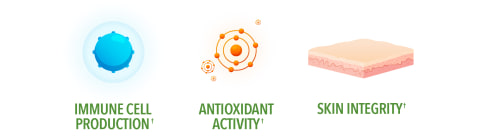 Immune Cell Protection. Antioxidant Activity. Skin Integrity