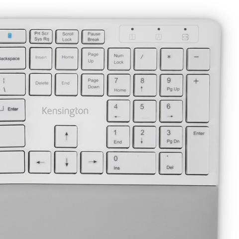 Caps Lock, Numbers Lock, Scroll Lock, and F-Keys