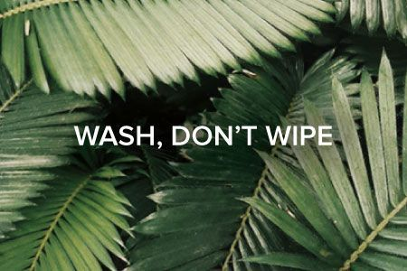 Leaf imagery with Wash, Don't Wipe text overlay